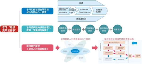 华为 矩阵组织结构